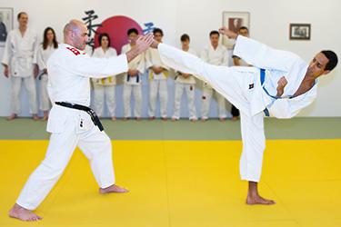 logo_jujitsu