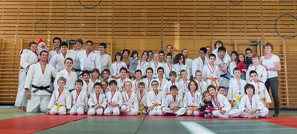 section_judo